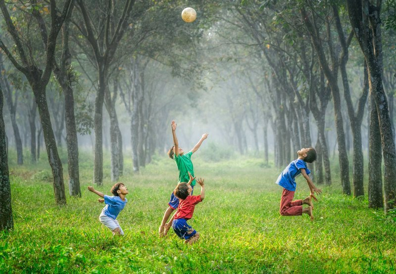 Children who grow up near green spaces are smarter