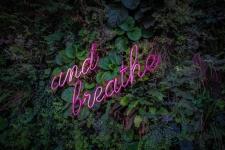 Breathwork for Inner Silence – Finding Your Calm through Breathing