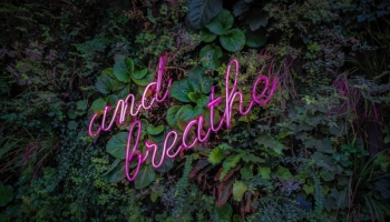 Breathwork for Inner Silence – Finding Your Calm through Breathing