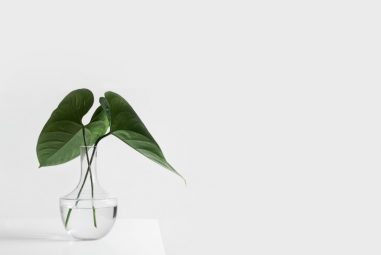 Keeping Things Simple in Life – Move from Noise to Growth